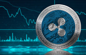 Bitfinex Introduces Trading for 12 Altcoins